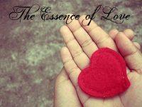 The Essence of Love(Сущность Любви)