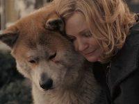 «Преданность собаки и предательство человека» от Ками