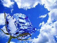 Рассказ»Ледяная роза.3 глава.»Волшебная роза»