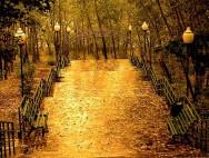 Ты любишь осень?