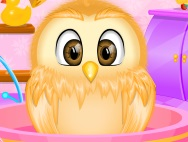3_owl