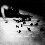 bed-girl-night-petals-romance-Favim