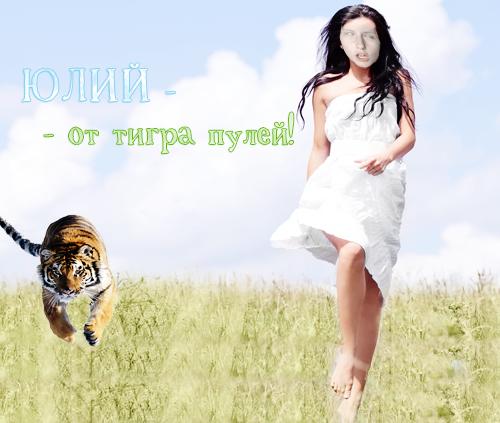 ЮЛИЙ-ОТ-ТИГРА-ПУЛЕЙ