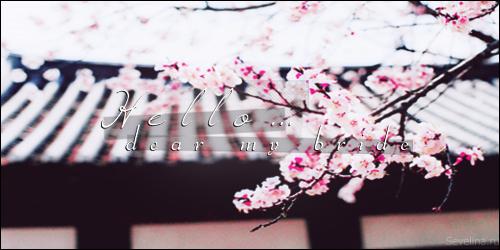 tumblr_o0lhe3c9VO1ukk0cco2_500