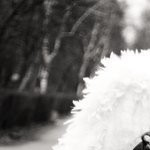 Рисунок профиля (volkova9817)