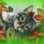 Рисунок профиля (***Мелодия_Дождя***)