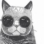 Рисунок профиля (█ ▆ ▅ ▂ ▁☆ kẴŢюñЯ ☆▁ ▂ ▃ ▅ ▆ █)