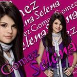 Рисунок профиля (Gomez)