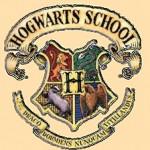 "Логотип группы (ϟМагламм вход воспрещён! Фанатки ""Гарри Поттера""ϟ)"