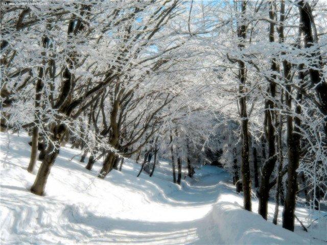 зима пришла 4